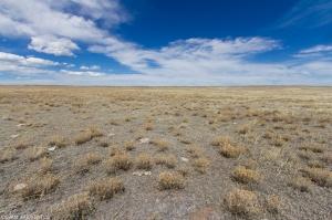 Shortgrass prairie and Soapstone Prairie Natural Area.